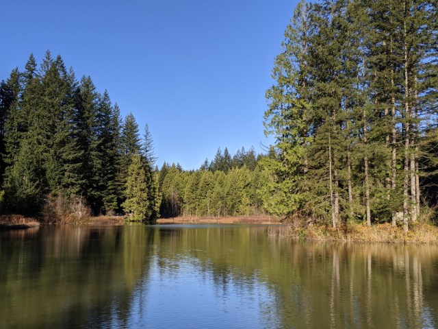 Mill Pond at the base of the trail