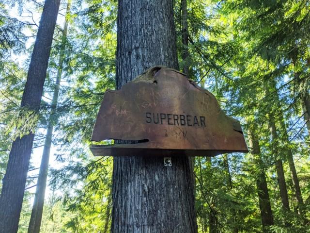 Sign on bear mountain - Superbear