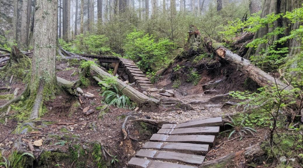 Cool bike ramps on the Crinkum Crankum trail