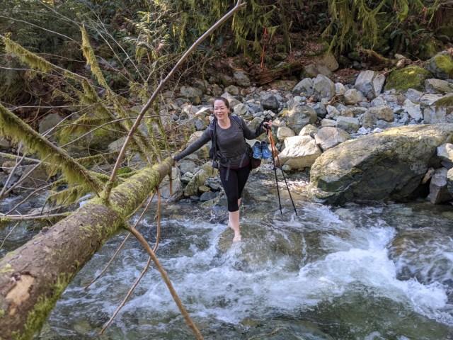 Robin Crossing Shone Creek