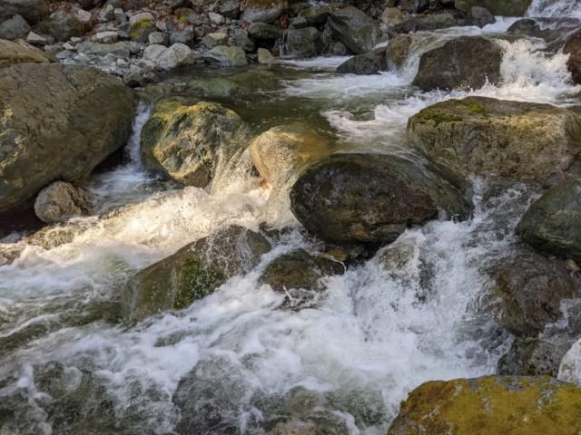 Shone Creek was quite full