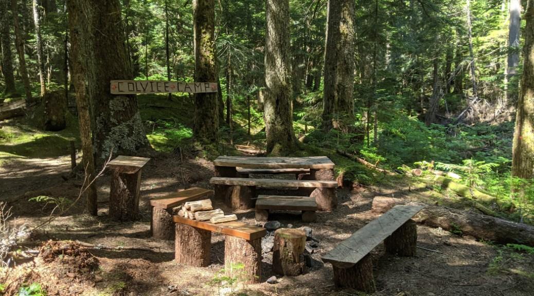 Covile Camp picnic area
