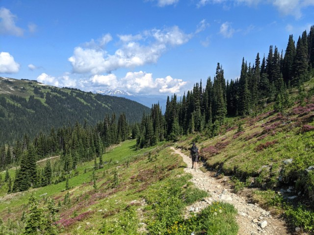 Gorgeous trail down to Singing Pass