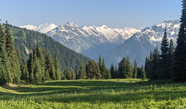 Gorgeous meadow views from below Oboe Summit