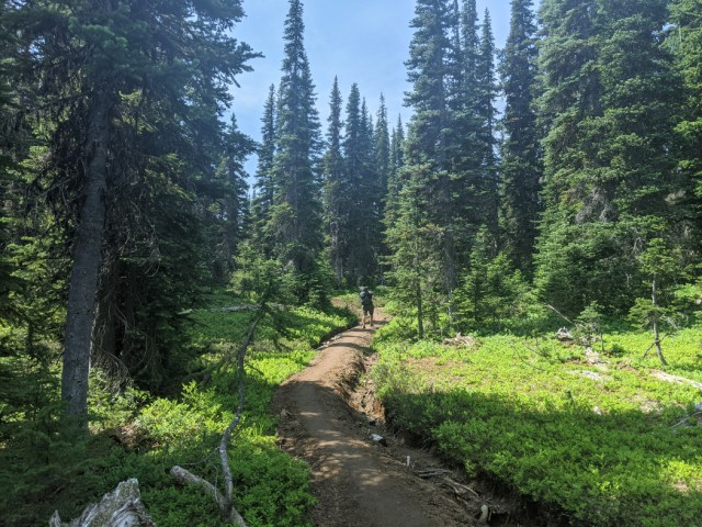 Helm Creek trail flattens out