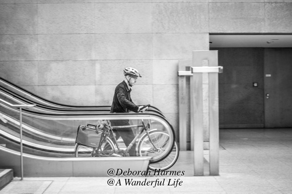 A man taking his bicycle down an escalator into the train station below the street level.
