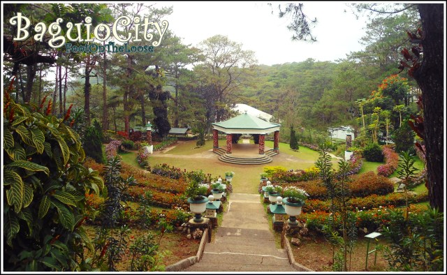 BAGUIO CITY: Travel Guide, Tips, Cheap Hotels and More