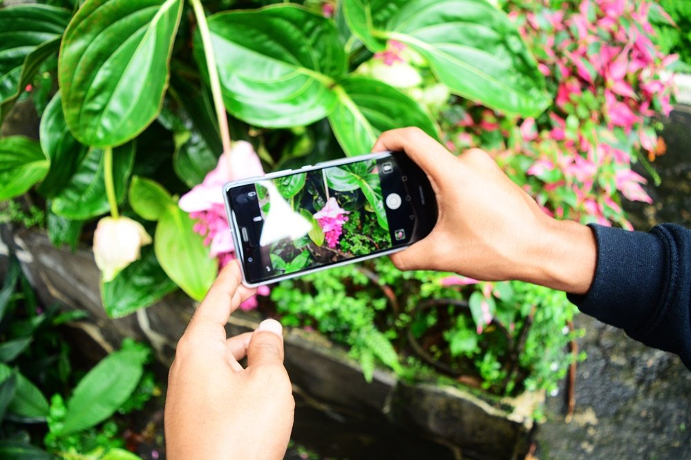 Capturing the beauty of nature with Huawei P9