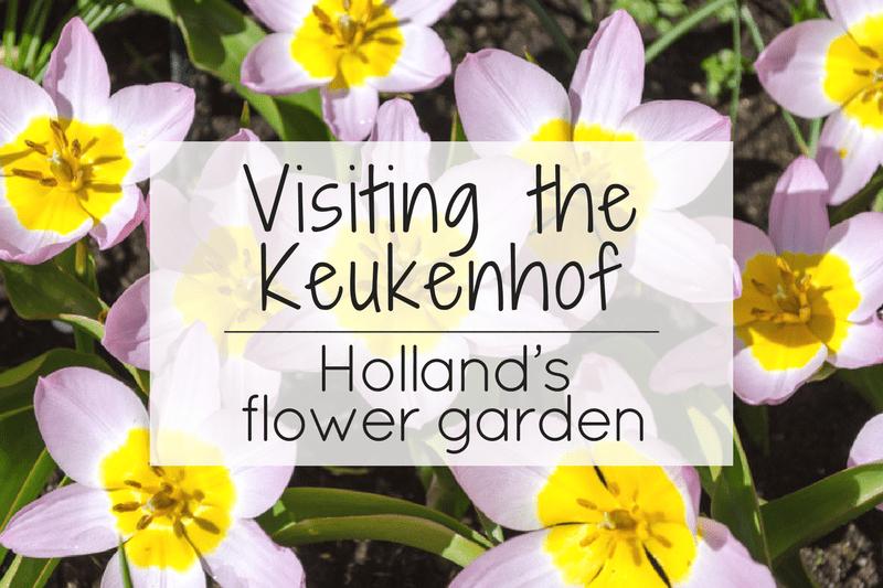 Visiting the Keukenhof – Holland's flower garden