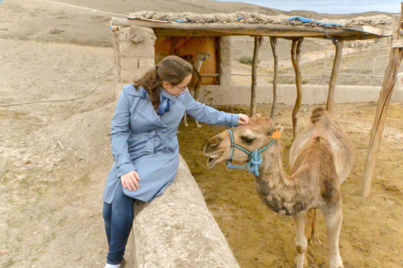 Jessica petting a camel