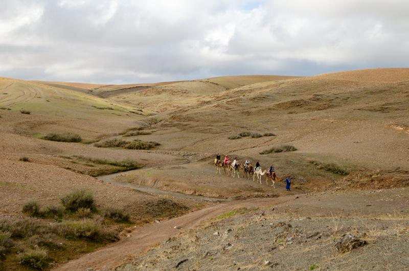 group in the desert
