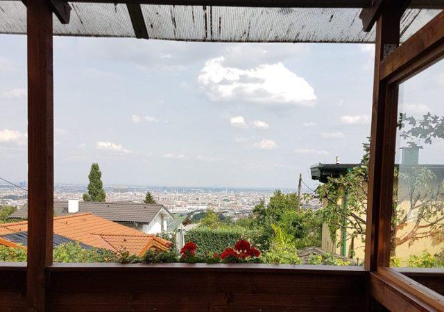 Overlooking Vienna