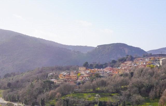 Views in Artizo