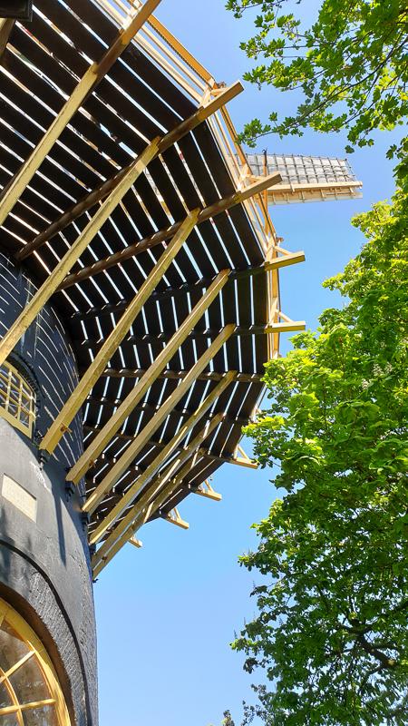 Windmill in Woerden