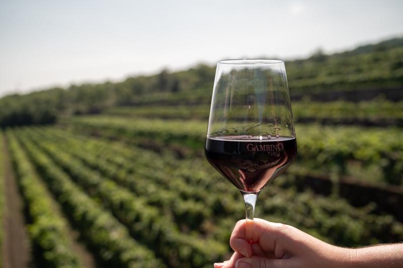 Mt Etna winery