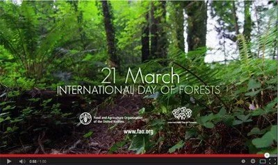 I was working on another commission, at the time, and these prints developed organically alongside it. International Day Of Forests National Awareness Days Calendar 2021