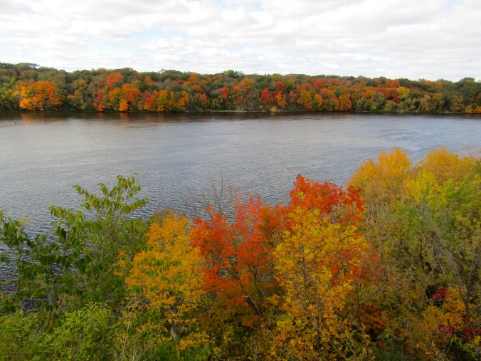 Fall colors on the Mississippi River, on my last day in Minneapolis