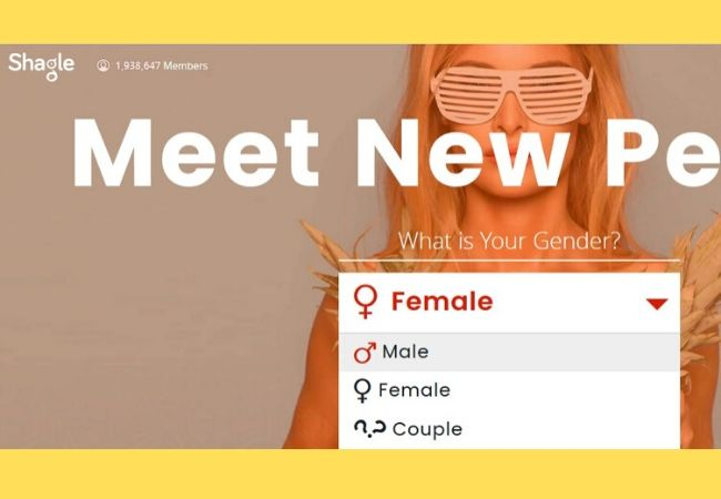 Shagle website similar to 321chat