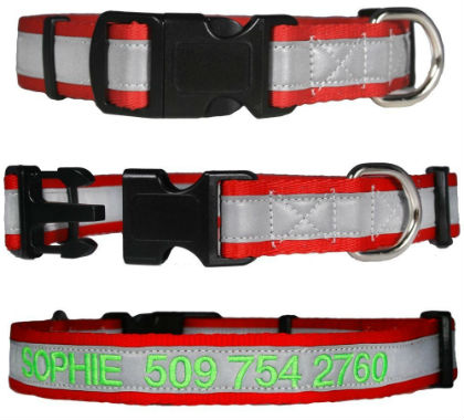 GoTags Embroidered Reflective Dog Collar