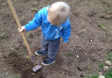 Soil Tips from a Newbie Gardener