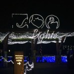 Zoo Lights in Portland, Oregon // A Well Crafted Party