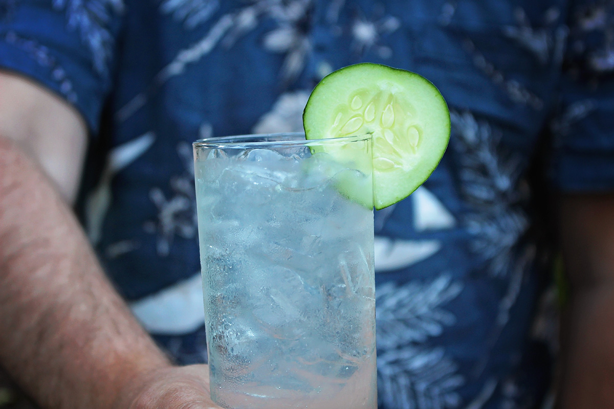 Cucumber, Citrus & Herbs Gin and Tonic