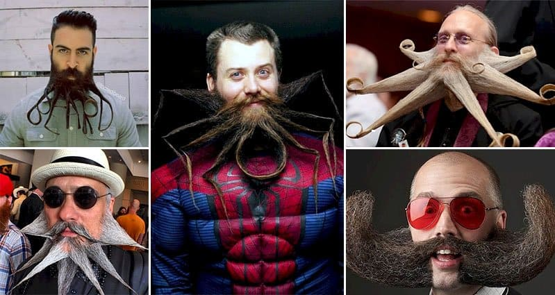 10 Crazy Beard Designs That Will Put Your Own Boring Style
