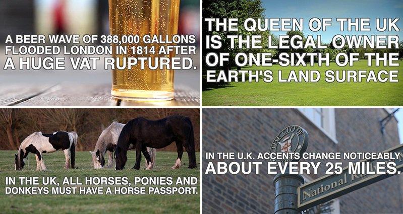 Funny Pictures Queen Elizabeth