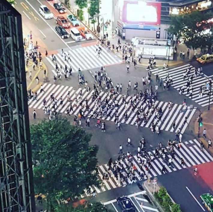 Image result for Diagonal crossings japan