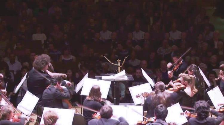 mantis-conductor-orchestra-insane-photos