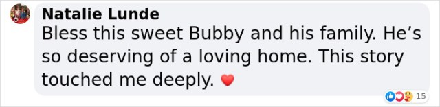 Natalie Lunde is touched about Bubby the 3-legged cat's story