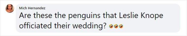 mich hernandez facebook comment