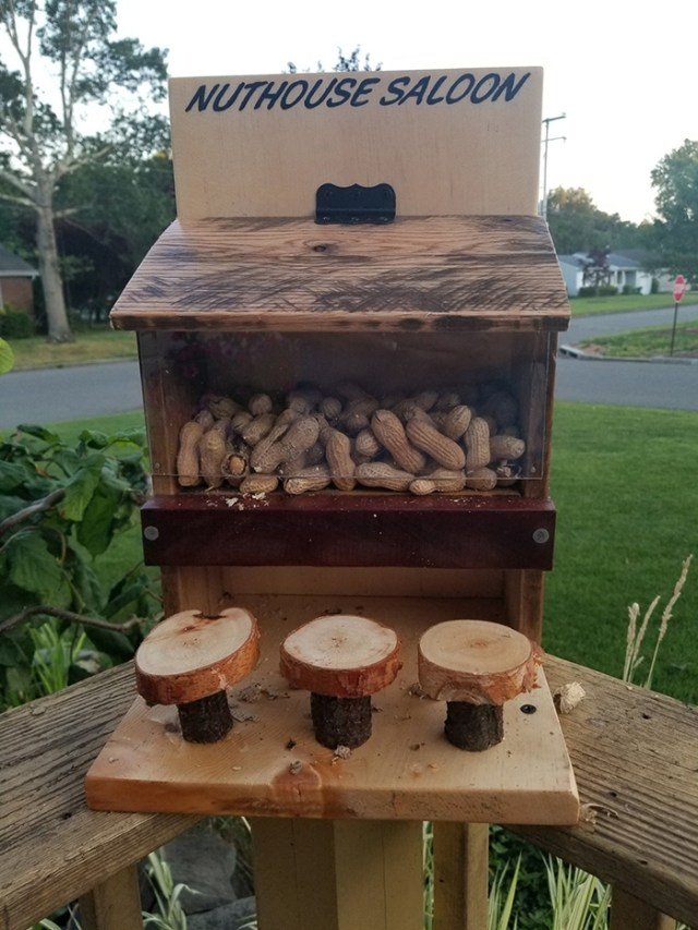 woodanthings wooden outdoor critter feeder