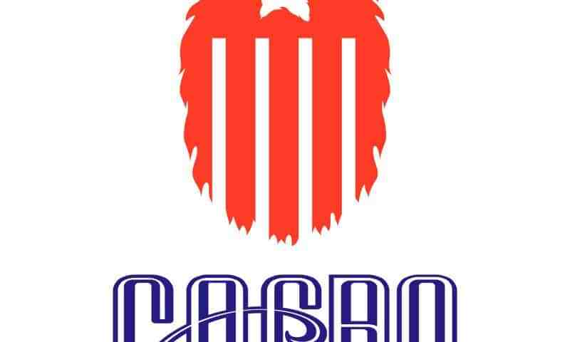 The Great American Fierce Beard Organization