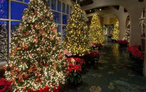 Christmas and Holiday Traditions Around the World (at Frederik Meijer Gardens)