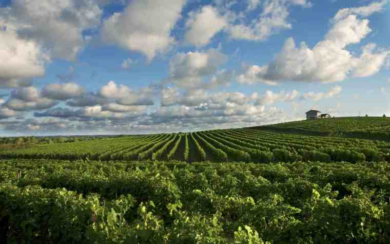 Exploring Southwest Michigan Wine Country - Awesome Mitten