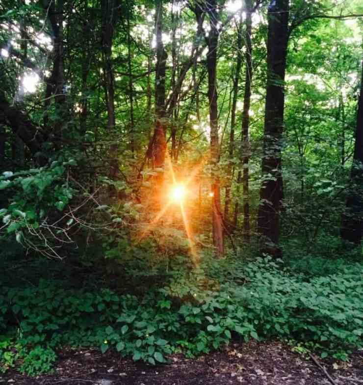 6 Trails to Try in Kalamazoo for Real Adventure - Awesome Mitten
