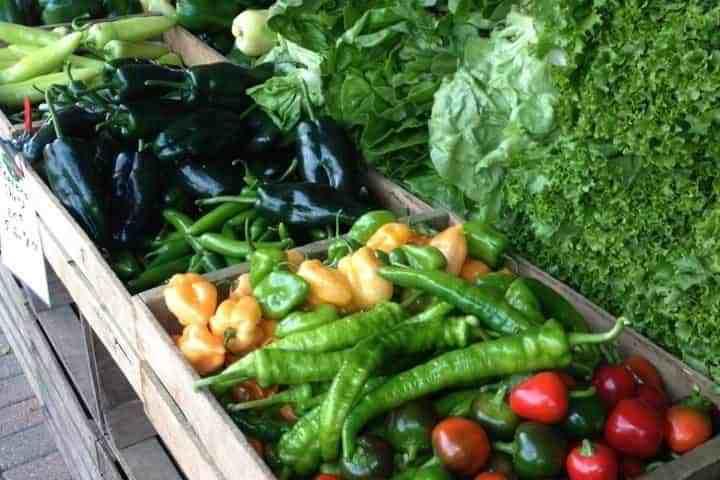 Farming Good Thyme with Visser Farms