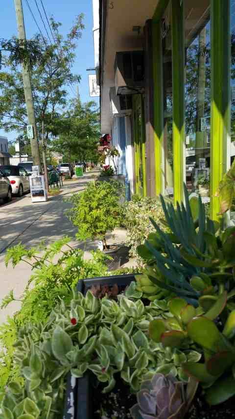 Shops on Cherry Street - #MittenTrip - GrandRapids