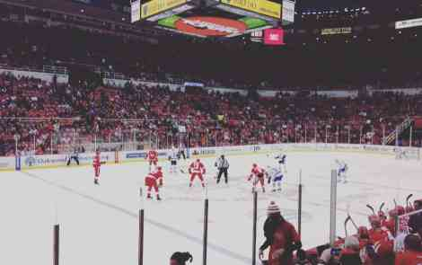 15 Reasons Why Michiganders Love Their Red Wings