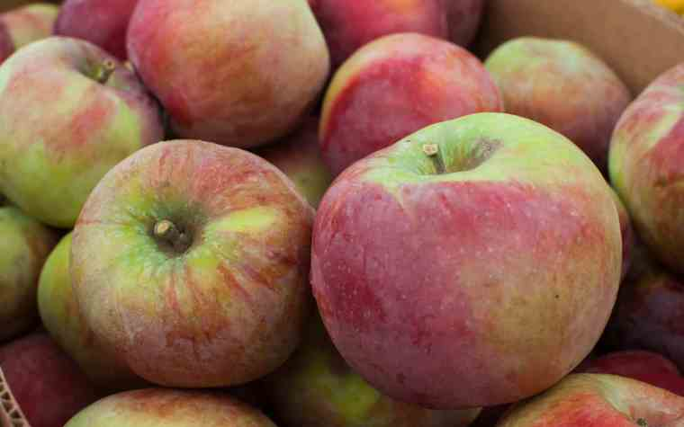 The Awesome Mitten - Michigan Apples Make Delicious Fall Recipes