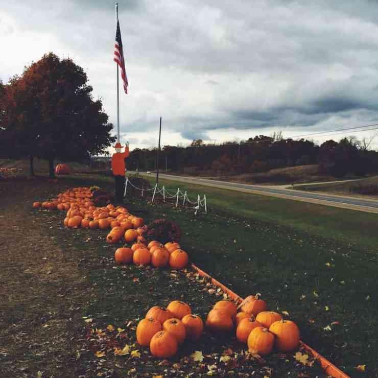 Gene the Pumpkin Man - #MittenTrip - Kalamazoo - The Awesome Mitten