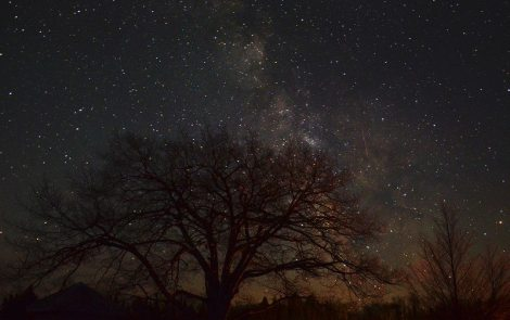 Seeing the Night Sky at Headlands