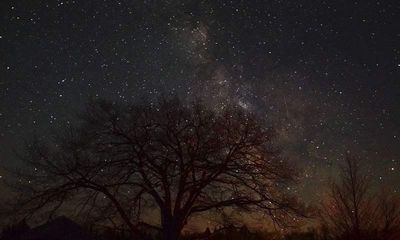 Experience the Stars at Headlands Dark Sky Park