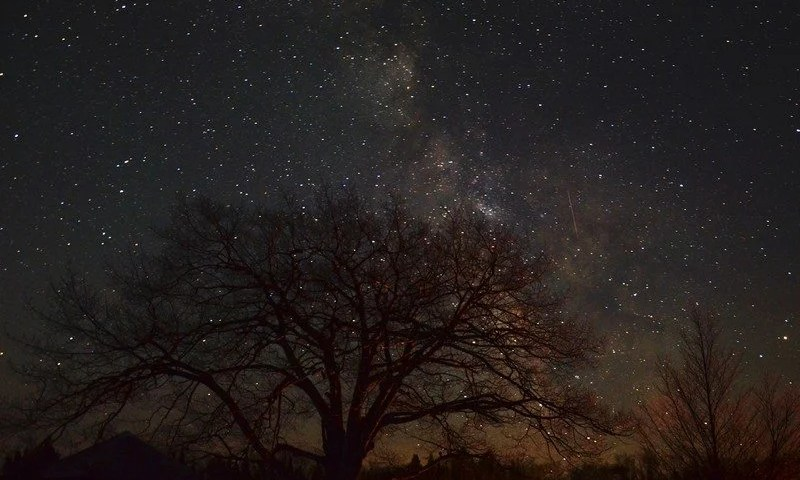 Experience the Stars at Headlands Dark Sky Park