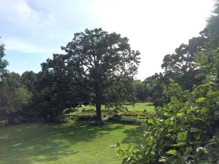 Applewood garden landscape. Photo courtesy of Joanna Dueweke.
