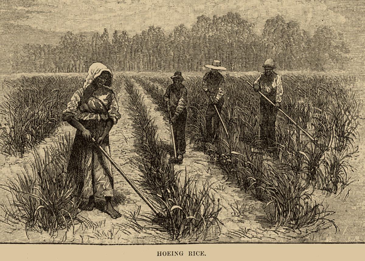 Slave Voices