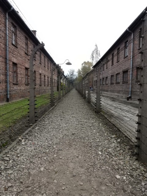 Auschwitz. Barracks and fences