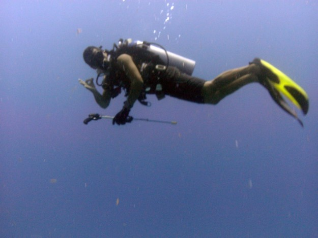 divers okay