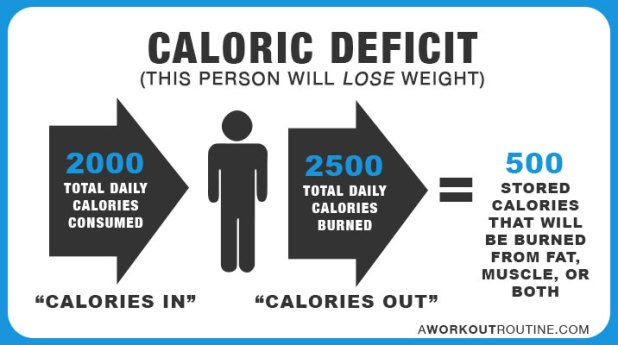 calorie deficit - How Many Calories Should I Eat A Day To Lose Weight or Gain Muscle?
